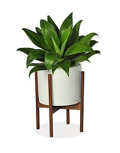 1b1d2af7590 Case Study Planters with Walnut Stand - Planters - Accessories - Room    Board White Planters
