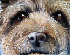 SPARROW Cairn Terrier Toto dog puppy face oil portrait painting art picture | eBay