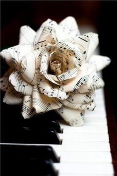 Musica embeleza a vida, sem ela não saberia viver tão feliz como sou.