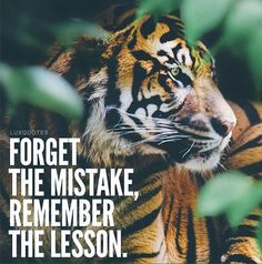 """Forget the mistake, remember the lesson."""