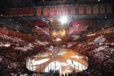 Detroit Red Wings hockey game!  Hey hey Hockeytown!!