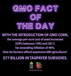 GMO farm subsidisation - we are paying for this crap no one should be consuming.