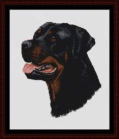 Rottweiler - Cross Stitch Collectibles fine art counted cross stitch pattern