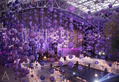 So gorgeous, thousands of lanterns hanging from the ceiling..  From David Tutera's My Fair Wedding