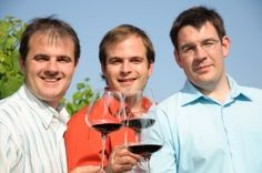 The Reinisch brothers, Hannes, Christian and Michael, all make wine and run the family business together at Johanneshof Reinisch. Located in the town of Tannendorf in the Thermenregion region of Austria. Read more here at circovino.com #Reinisch #wine #Austria #circovino