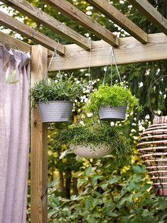 Bilderesultat for frukttrær i plen Simple Garden Designs, Small Garden Design, Hanging Flower Pots, Hanging Plants, Small Space Gardening, Small Gardens, Home Garden Plants, Garden Pots, Garden Ideas
