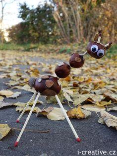 K podzimu neodmyslitelně patří tvoření z kaštanů. Oblé hladké kaštany krásné zemité barvy už od nepaměti lákají děti ke sbírání. Za pomoci dřevěných špejlí, párátek a zápalek můžete z nasbíraných pokladů vytvořit neobyčejná zvířátka :-) …