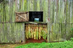 Google Image Result for http://images.fineartamerica.com/images-medium/tobacco-barn-ron-morecraft.jpg