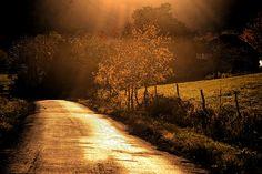the road less traveled - catskill, ny