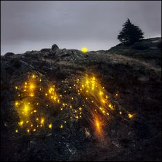 Light installations by Barry Underwood   http://inagblog.com/2016/06/barry-underwood-update/   #art #installation