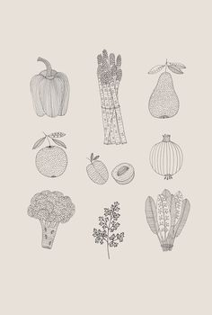 Ryn Frank is a freelance illustrator, specialising in hand drawn illustrations. Vegetable Illustration, Fruit Illustration, Pattern Illustration, Mountain Illustration, Minimalist Art, Canvas Artwork, Collage Art, Creative Art, Art Inspo