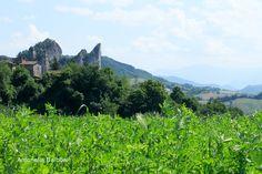 Ai sassi di Rocca Malatina di Guiglia (MO) - 1 giugno 2015 - Canon EOS 1200D