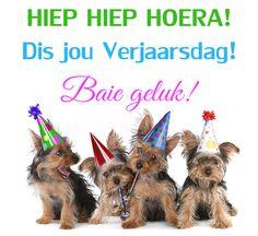 HIEP HIEP HOERA! Dis jou Verjaarsdag! Baie geluk! Best Birthday Wishes Quotes, Birthday Wishes For Women, Birthday Qoutes, Birthday Wishes Messages, Happy Birthday Wishes Cards, Birthday Blessings, Birthday Greetings, Birthday Cards, Happy Birthday Dog Meme