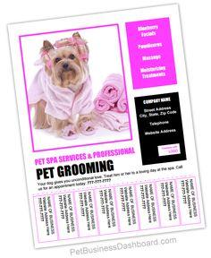 Premium Content Member Access - Pet Business Dashboard