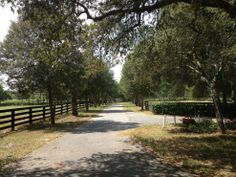 Country Oasis on 14.8 fenced acres!