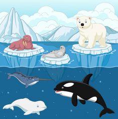 Cartoon wild arctic animal on north pole vector illustration Polo Norte, Polo Sul, Polar Bear On Ice, Polar Bear Logo, Polar Bear Cartoon, Artic Animals, Cute Animals, North Pole Animals, Un Igloo