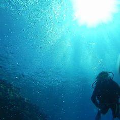 Great barrier reef miss you saudadessss!!!  #greatbarrierreef #beautiful #sea #beach #instamission269 #instamission268 #instadaily #gopro #goprooftheday #goprohero3 #gopro3 #goprolife #tonoadorofarm #beach #cairns #australia by lu_fc http://ift.tt/1UokkV2