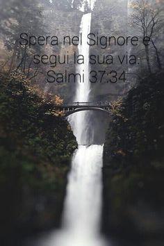 Salmo 37:34