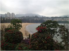 The beautiful Hong Kong! #hongkong #travel #expat