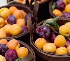 Plums and apricots