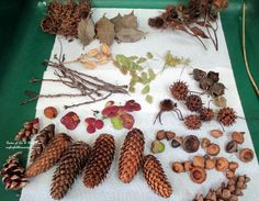DIY Project : Making Fairies from Natural Materials | Our Fairfield Home & Garden