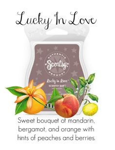 DUPE ALERT!! This smells exactly like LOVE SPELL by Victoria's Secret! Scentsy's version smells even better! <3 LUCKY IN LOVE SCENTSY BAR: Sweet bouquet of mandarin, bergamot, and orange with hints of peaches and berries.