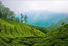 Somatheeram - Ayurveda in India - Round Trips