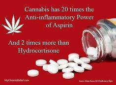 Cannabis - 20 x anti-inflammatory power of aspirin