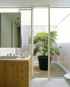 Floor to Ceiling Window Small Courtyards around the House Marin County Residence by Dirk Denison Architects | HomeDSGN, a daily source for inspiration and fresh ideas on interior design and home decoration.