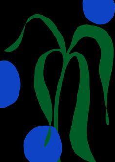 Antti Kalevi, Blue Flower on Black Background, 2015