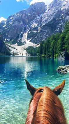 Sara Albani in As Seen Through Horses' Ears. Near Ora, Trentino-Alto Adigio, Italy. Here we go again ❤ Braies Lake, Italy, with my boy Olly, QH.