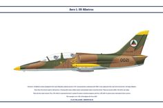 L-39 Afghanistan 1 by WS-Clave