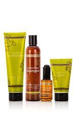 DoTerra hair Care System www.hayleyhobson.com  Hayley Hobson  Essential Oils