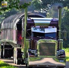 old school peterbilt truck drivers Big Rig Trucks, Trucks Only, Show Trucks, Peterbilt 389, Peterbilt Trucks, Custom Peterbilt, Custom Big Rigs, Custom Trucks, Custom Trailers