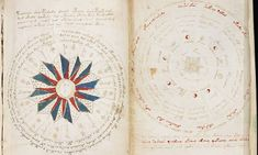 Exact replicas of the Voynich Manuscript, an illustrated codex from Medieval…