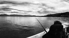 valokuvatorstain aiheena kärsivällisyys, by Heikki Rantala