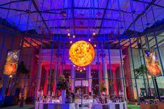 Big Bang Gala at California Academy of Sciences.  Lighting Design by Got Light.