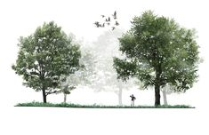 We design ecologically-rich and resource-efficient landscapes which inspire lasting bonds between people and place. Architecture Concept Diagram, Architecture Collage, Architecture Graphics, Architecture Visualization, Architecture Portfolio, Landscape Architecture, Landscape Design, Architecture Design, Photoshop Rendering