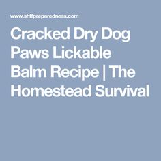 Cracked Dry Dog Paws Lickable Balm Recipe | The Homestead Survival