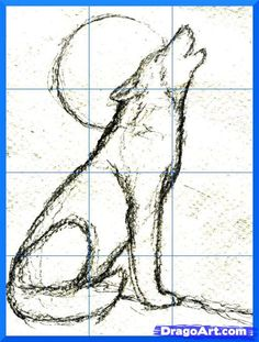 how to draw a howling wolf step 6