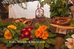 Einfach der Wahnsinn - dreieinhalb Stunden mit Witz und Humor, mit Tiefgang und Scharfblick - Der Nockerlberg in Teisendorf - Starkbieranstich der CSU-Teisendorf und der Brauerei Wieninger - Fotos roha-fotothek — Der Nockerlberg in Teisendorf - Starkbieranstich