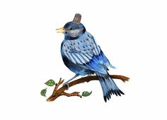 Bird Art Print BlueBird with Silver Thimble by ChasingtheCrayon, £12.00