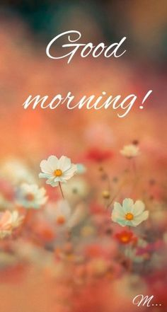 Good Morning Messages: If you like to share Good Morning with your family, relatives, lover & friends. Find out unique collections of Good Morning Msg, best good morning messages for friends in Hindi, morning love messages.