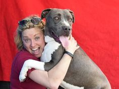 **CODE RED!  RESCUE, FOSTER OR FUREVER HOME NEEDED!** Adoption coordinator pleads for help for special dog who is out of time