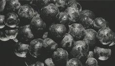 Blueberry, Fruit, Food, Essen, Blueberries, Yemek, Meals