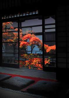 Myoshin-ji temple, Daishin-in, Kyoto, Japan 妙心寺 大心院. I would love to have a room in my home like this