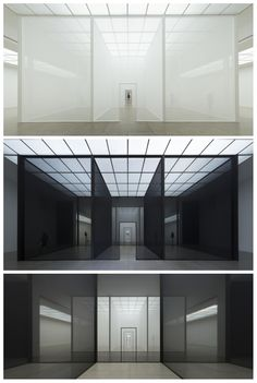 Robert Irwin    Double Blind    July 5 – September 1, 2013    Wiener Secession, Association of Visual Artists