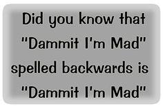 spelled backwards
