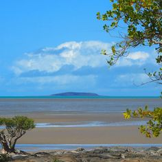 Clareview lunchbreak Bruce Highway Queensland #Clareview #Queensland #thisisqueensland #visitqueensland #travel_queensland #beach #ocean #surf #GreatBarrierReef #islands #splendid_shotz #AUSTRALIA_OZ #igaustralia #travel #ruralAustralia #holiday #family #highway #dailydoseofdelightful #Saturday #skypainters #skyporn by boyne_river_baroness http://ift.tt/1UokkV2