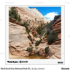 Slick Rock Zion National Park Utah Wall Sticker